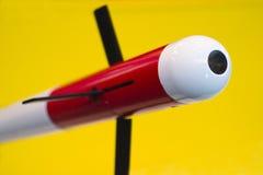 anti missil för flygplan Royaltyfri Fotografi