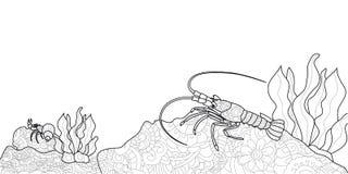 anti-spänningsfärgläggningbok för vuxna människor Skaldjur på botten av floden Cancer eller räka Langustsvartlinjer stock illustrationer