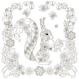 Anti stress abstract squirrel with nut, square flowering frame Royalty Free Stock Images