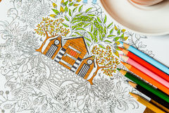 Anti-stress coloring book in the drawing process Stock Images