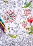 Anti stress coloring hobby for busy adults Stock Images