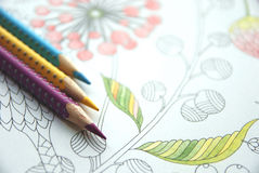 Anti stress coloring hobby for busy adults. With flower and plants patterns and colorful pencils, self soothing Stock Photo