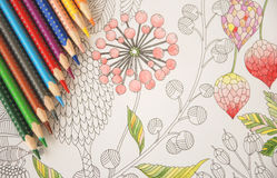 Anti stress coloring tropical flowers colorful pencils Royalty Free Stock Images