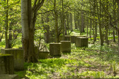 Anti tank blocks from world war 2 in woodland Stock Photos
