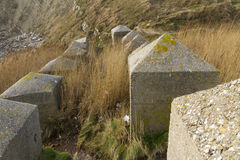 Anti Tank Cubes, Stone World War Two invasion coastal defences. Concrete anti tank blocks, placed to hinder invasion, Pondfield Cove, Worbarrow bay , Dorset Stock Images