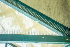Anti transitoire d'oiseau sur le bâtiment images stock