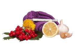 Anti-virus remedies Stock Foto's