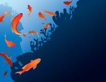 Antias fisk Arkivfoto
