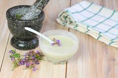 Antibacterial och naturlig hemlagad deodorant Arkivfoto