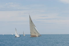 antibes races ships Royaltyfri Fotografi