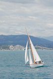 The Antibes ships races. 2007, nice boat Stock Images