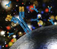 Antibodies and virus stock illustration