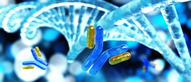 Antibodies and virus royalty free stock images