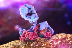 Antibody attacking bacterium Stock Image