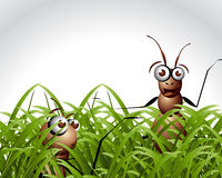 Antic Ant Character Stock Photo