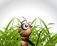 Antic Ant Character Stock Image