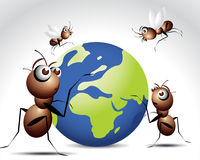 Antic Ant Character Stock Photos