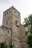 Antic castle with trees in Poland Royalty Free Stock Images