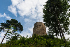Antic castle with trees in Poland Stock Photography