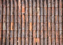 Antic Tile texture on the roof of an old Turaida castle in Latvia. Architecture background Stock Image