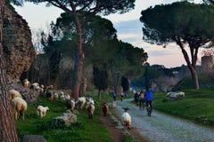 Antica Appia foreshortenig με τους ανθρώπους και τα ζώα Στοκ εικόνα με δικαίωμα ελεύθερης χρήσης