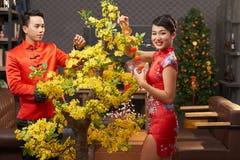 Anticipación de Año Nuevo vietnamita Fotos de archivo libres de regalías