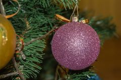 In anticipation of the holiday. The eve of the new year. In anticipation of the holiday royalty free stock images