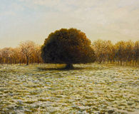 In Anticipation of The Spring. An oil painting on canvas of a warm golden sunset view of an old Holm Oak Tree in the end of the winter, with patches of snow in Royalty Free Stock Photo