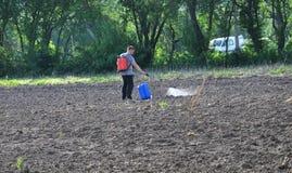 Anticiper la destruction des mauvaises herbes photographie stock libre de droits