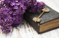 Antiek boek en oude sleutel Stock Afbeelding
