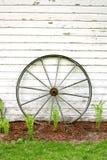Antiek Houten Wagenwiel op Rustieke Witte Achtergrond Stock Foto
