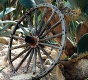 Antiek Houten Wagenwiel tegen Cactusinstallatie royalty-vrije stock foto