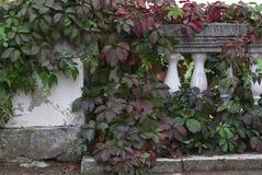 Antieke Balustrade Royalty-vrije Stock Fotografie