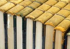 Antieke boeken in een rij royalty-vrije stock foto
