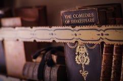 Antieke boeken op plank Royalty-vrije Stock Afbeelding
