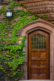 Antieke deur Stock Foto's