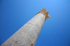 Antieke kolom Royalty-vrije Stock Fotografie