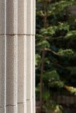 Antieke kolom Stock Foto's