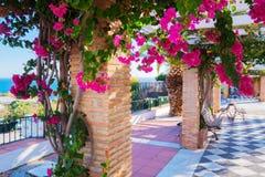 Antieke kolommen met kleurrijke bloemen, stadspark, groen gebied dichtbij het overzees stock afbeelding