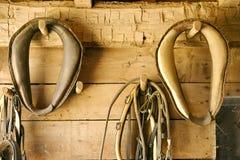 Antieke paardkraag royalty-vrije stock foto