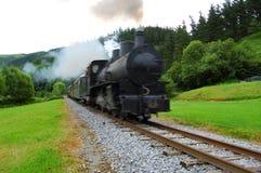 Antieke trein die bos kruist stock afbeelding