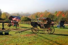 Antieke wagen onder kleurrijke bomen in de herfsttijd stock fotografie