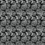 Antieke Witte Uitstekende Rozen op zwarte achtergrond Royalty-vrije Stock Foto