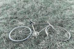 Antigüedad o bicicleta oxidada retra en la hierba Foto de archivo