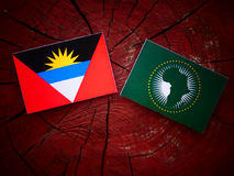 Antigua and Barbuda flag with African Union flag on a tree stump Royalty Free Stock Image