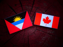 Antigua and Barbuda  flag with Canadian flag on a tree stump isolated Royalty Free Stock Images