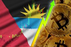 Antigua and Barbuda flag and cryptocurrency growing trend with many golden bitcoins vector illustration