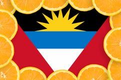 Antigua and Barbuda flag in fresh citrus fruit slices frame royalty free illustration