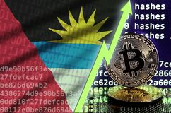 Antigua and Barbuda flag and rising green arrow on bitcoin mining screen and two physical golden bitcoins stock illustration