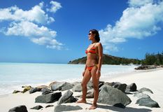 On Antigua Beach. The girl standing on Antigua island beach, Antigua & Barbuda stock images